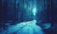 http://www.ambient-mixer.comStrange, enticing sounds from the dark winter forest