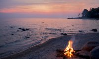 Campfire on an evening forest beach with ocean waves.