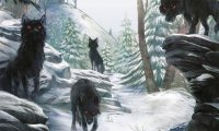 Chased by wolves in winter