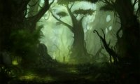 [DND] Nice Forest