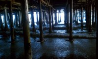 You were still catching your breath under the old pier when it ran past your hiding place...
