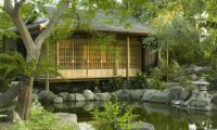 Outdoor Japanese garden
