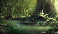 http://www.ambient-mixer.comD&D Fantasy Forest