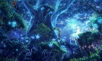 http://www.ambient-mixer.comEnchanted Faerie Forest at Night