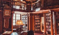 Your Library in Camelot Castle