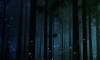 A Fairy Sanctuary in an Enchanted Forest at Night