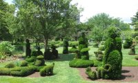 Spring at the Topiary Garden