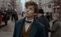 Inside the magical case of Newt Scamander...