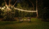 Garden lights and Cricket Concerto