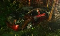 Car crash in the bayou