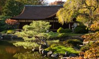 Japanese Garden and Tea House