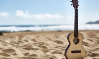 Ukelele by the Surf