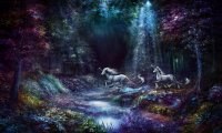 The Unicorn Forest