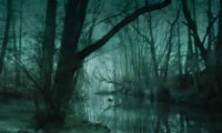 http://www.ambient-mixer.comHorror swamp