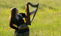 Celtic Harp on a Rainy, Windy Day